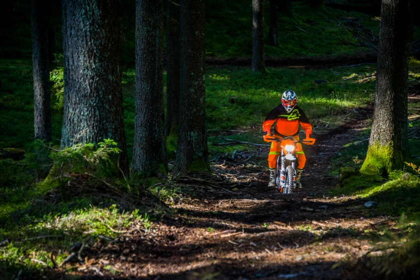 freeride-108_wheelie_werth.jpg